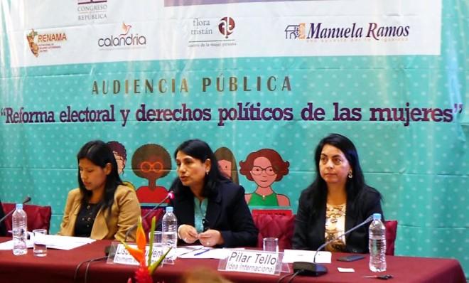 Audiencia pública Reforma Electoral